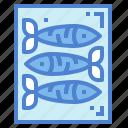 animal, fish, life, sardine, sea