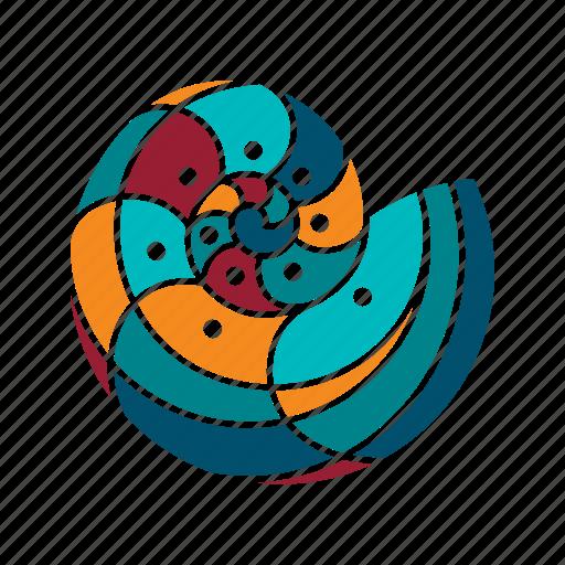 animal, marine, nature, ocean, sea, seaside, shell icon