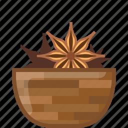 anise, badian, cooking, orient, seasoning, spice, yumminky icon