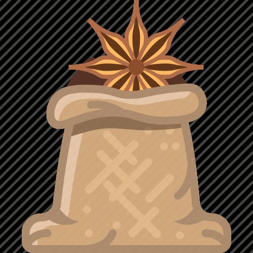 anise, badian, cooking, sack, seasoning, spice, yumminky icon