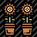 bloom, plant, season, spring