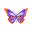 butterfly, summer, flower, beauty, colorful, nature, butterflies icon