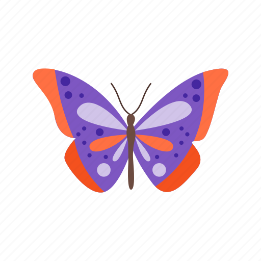 beauty, butterflies, butterfly, colorful, flower, nature, summer icon