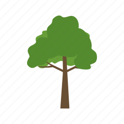 forest, green, nature, season, tree, wood icon