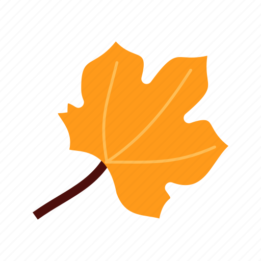 autumn, color, colorful, leaf, leaves, orange icon