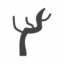 bare, branch, branches, nature, plant, tree icon