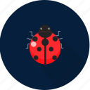 animal, beetle, bug, insect icon