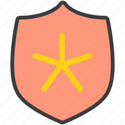 authentication, important, protection, secure, security, shield, star icon