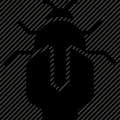 bug, business, fix, marketing, seo, strategy icon