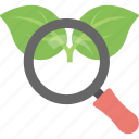 organic content, organic keyword, organic seo, search engine, serp icon