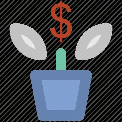 leafage, money plant, plant pot, sapling, small plant icon
