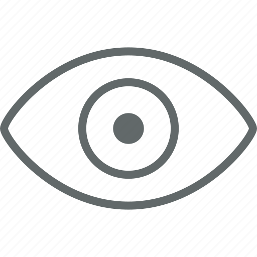 display, eye, retina icon