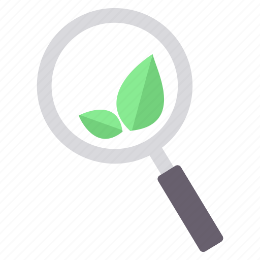 ecology, green, greenery, leaf, magnifier, magnifying, search icon