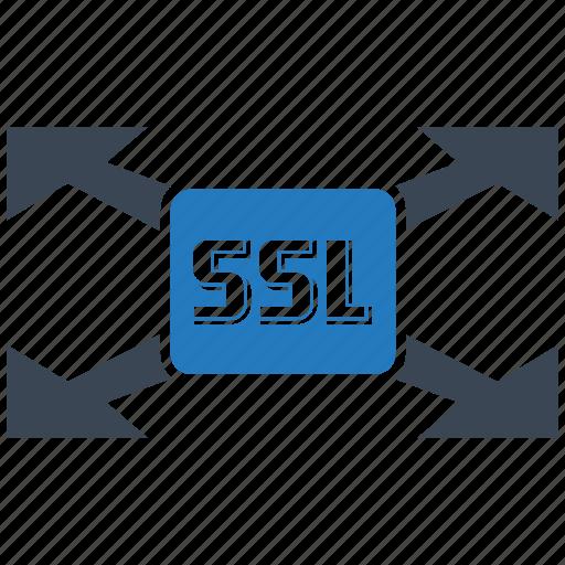 certificate, seo, seo pack, seo services, social media, ssl, web designer icon