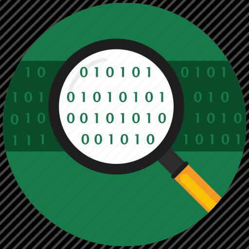 analitcs, data, find, flat icon, search, seo, web icon