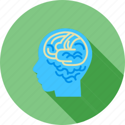 brain, brainstorming, human, internet, knowledge, skills, thoughts icon