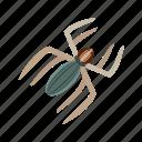 infection, injection, slider, spider, spiderweb, vaccine, virus icon
