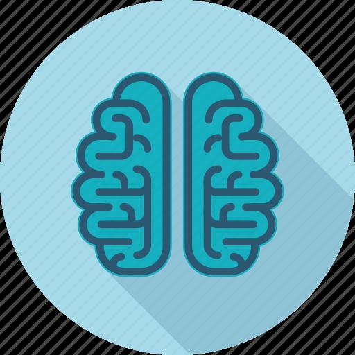 blogging, brain, brainstorming, flat design, idea, people icon