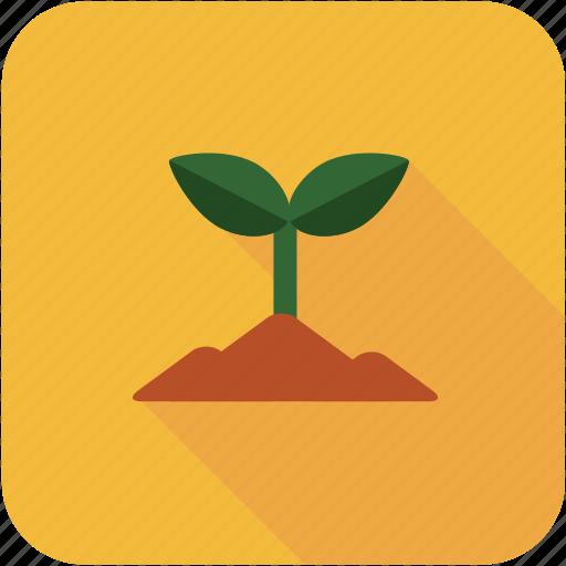 decoration, garden, tool icon