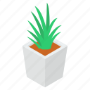 aloe vera plant, aloe vera pot, house planting, indoor plant, potted plant icon