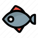 food, healthy food, salmon, sea animal, seafood icon