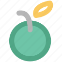 diet, food, fruit, healthy, nature, orange, organic icon