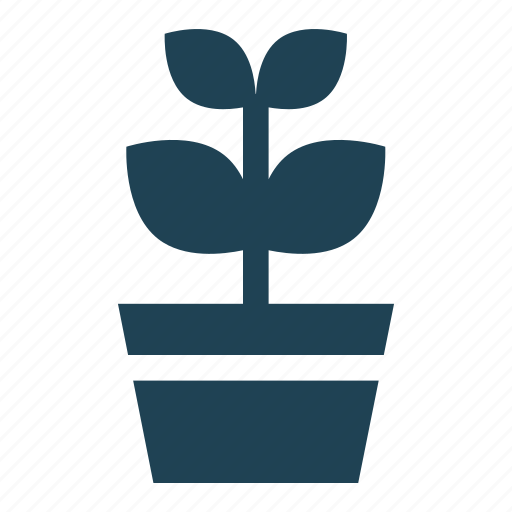 flower, flower pot, leaves, petals, plant, shopping, solid icon