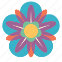 decoration, floral, flower, mandala, ornament icon