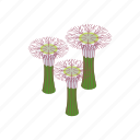 beauty, botanical, city, design, garden, isometric, singapore icon