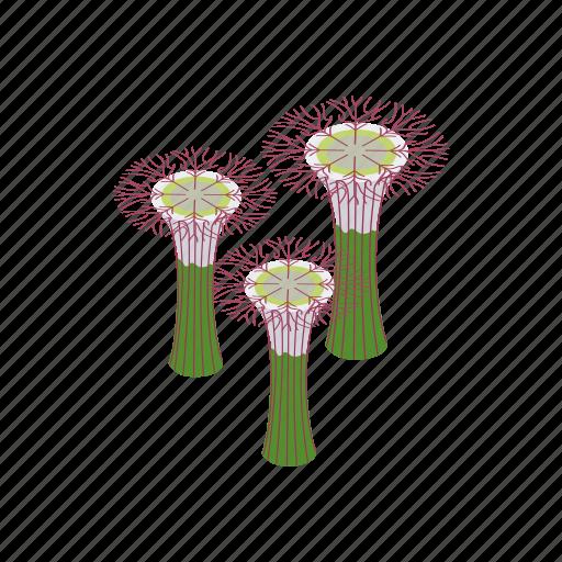 beauty, botanical, city, design, garden, isometric, singapore icon