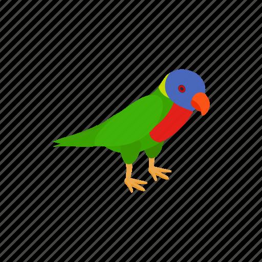 animal, bird, exotic, isometric, parrot, pet, wing icon