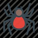 arachnid, poisonous, spider, toxic, venomous icon