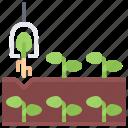 farm, farmer, garden, manipulator, planting, smart icon
