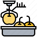 fruit, goods, process, weigh icon