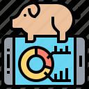 analysis, animal, livestock, pig, research