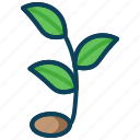 agriculture, farming, plant, smart farm, sprout