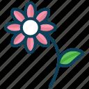 flower, garden, plant, smart farm