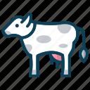 animal farm, cow, domestic animal, milk, smart farm icon