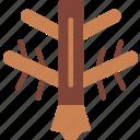 sign, symbolism, symbols, tree
