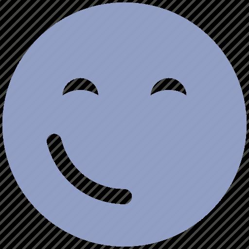 emoticons, expression, fancy, happy smiley, smiley, wink, winking smiley icon