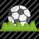 ball, football, grass, soccer, sport, sports, stadium
