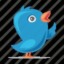 tweet, bird, twitter icon