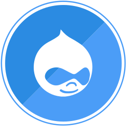 cms, drupal, internet, template icon