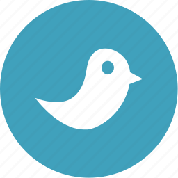 bird, communication, network, social, twitter icon