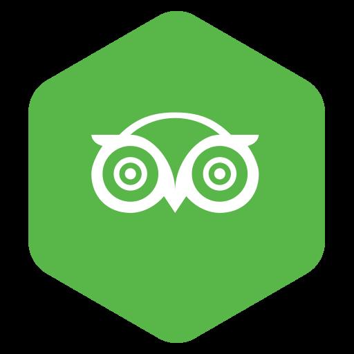 logo, network, owl icon