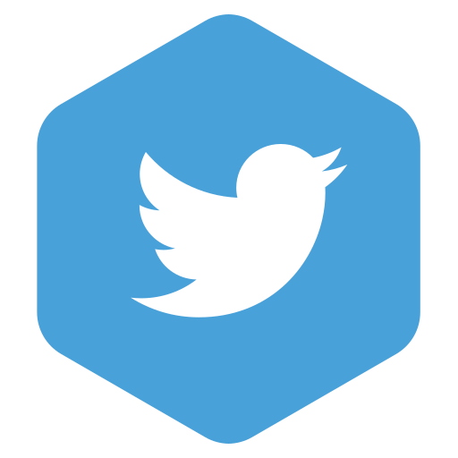 logo, media, network, social, twitter icon