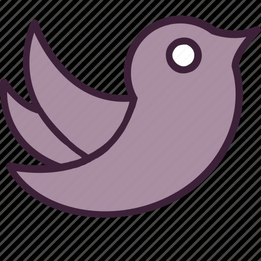 bird, communication, media, message, multimedia, social, twitter icon