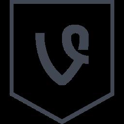 logo, media, social, vine icon