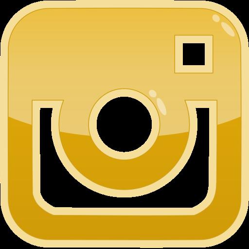 Instagram Media Photo Social Icon