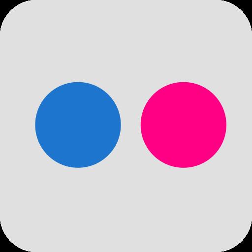 flickr, marketing, media, social, website icon